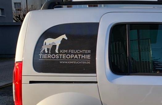 Firmenfahrzeug Beklebung für Tierosteopathie Kim Feuchter
