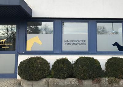 Professionelle Beklebung für Tierosteopathie Praxis Kim Feuchter